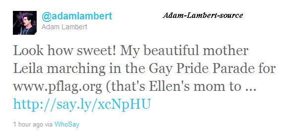 #461 La maman de Adam marchant à la parade gay pour www.pflag.org. (12.06.11)