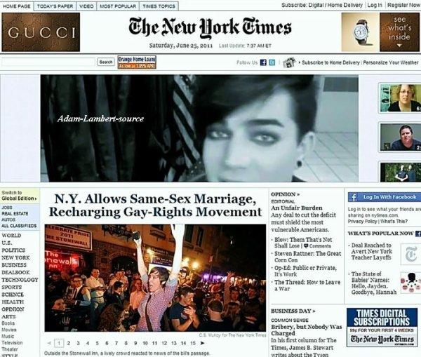 #481 24 juin 2011: Adam avec une image tiré de It Gets Better sur la première page du site du New York Times.
