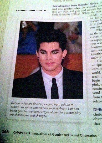 #877 Adam dans un livre sur ''L'inégalité des genres et de l'orientation sexuelle'' chapitre 9.