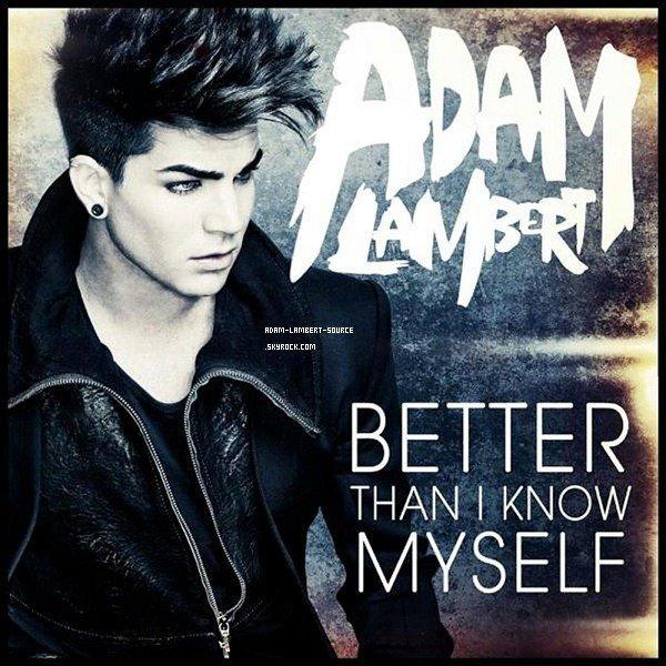 #892 Voici la pochette de Better Than I Know Myself!