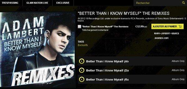 #1161 Les remixs de Better Than I Know Myself en vente sur AdamOfficial!