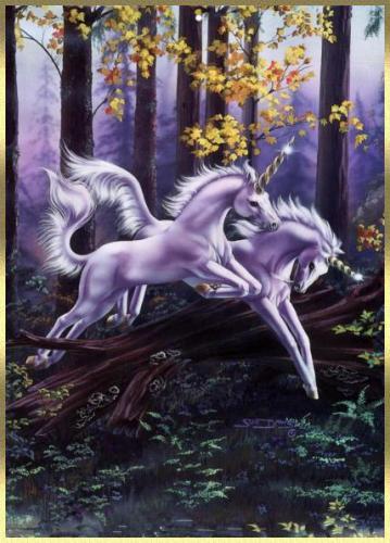 ... rêve ... les licornes ...