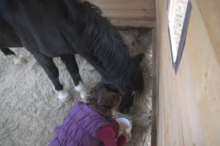 Ma loulou et son poney <3