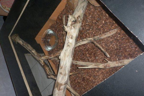 Ma table basse fait maison avec mon python dedans
