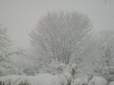 neige euh!!! encore de la neigeeee!!!!!!