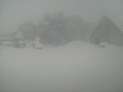 Tempète de neige !!!!
