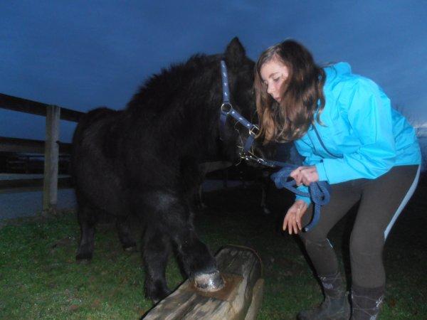 Mon poney et moi ... <3