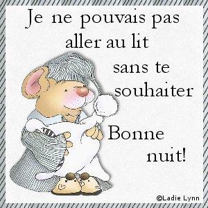 BONNE  NUIT  LES  AMIS   $)