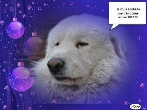 Bonne année 2012 ! :D