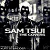 Sam Tsui - Love The Way You Lie, Dynamite & Teenage Dream : Mash Up
