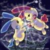 jumelles-pokemon