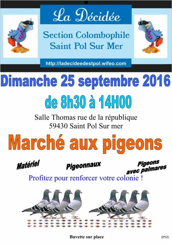 marché de pigeons