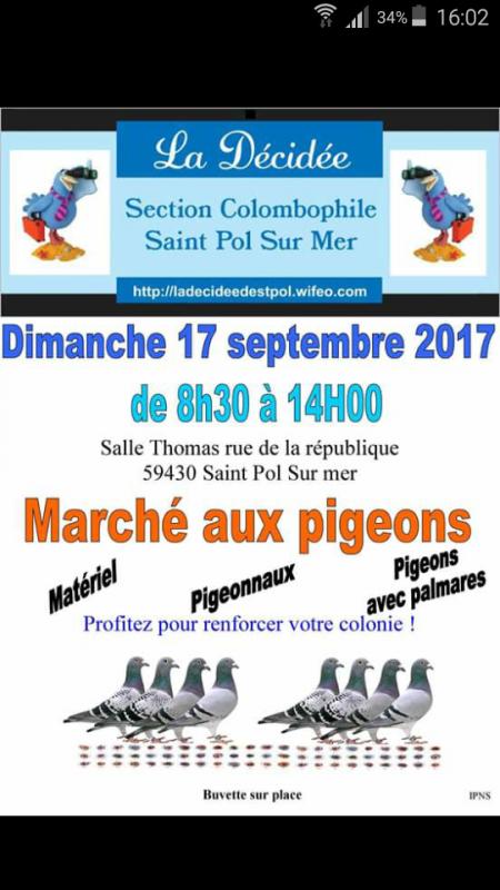 Marché de pigeon