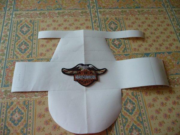 le blouson  Harley Davidson de GOGO