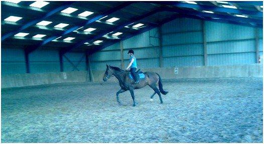 MUSE ELLE ME MANQUE :'(  .   ,L'air du paradis est celui qui souffle entre les oreilles de ce cheval.