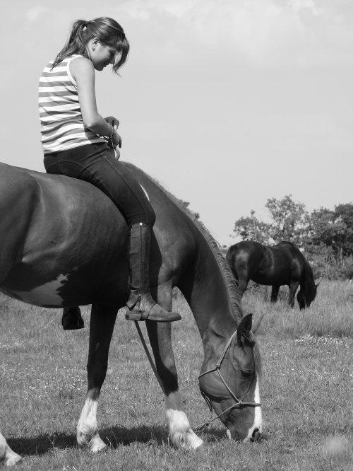 """""""L'homme et le cheval sont dans deux mondes différents ! Ce qui compte, ce n'est pas la méthode employée mais la façon d'aborder les choses."""" ♥"""