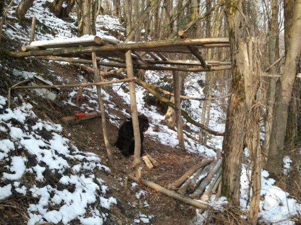 3) un petit abri construis