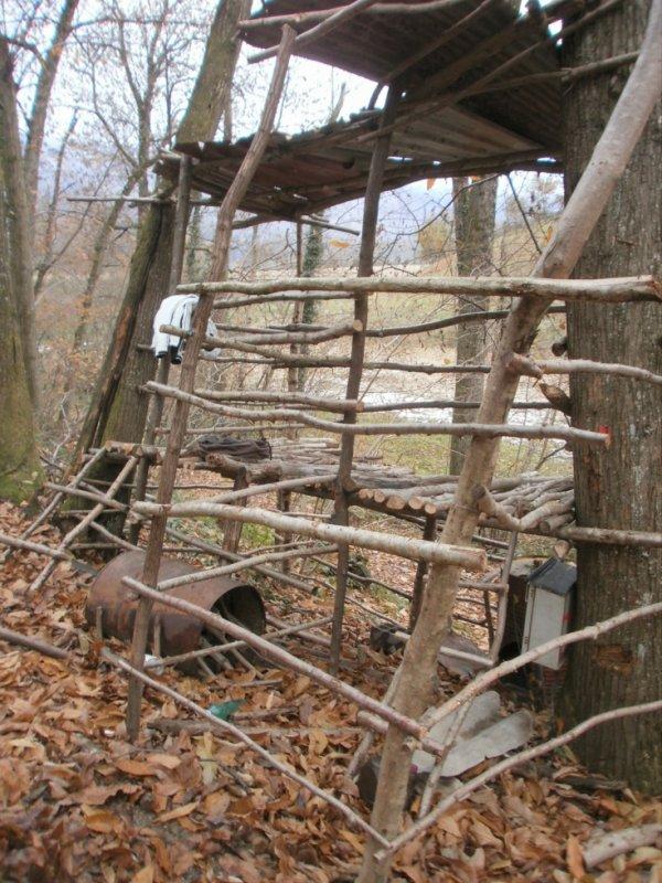 petite vue sur la cabane