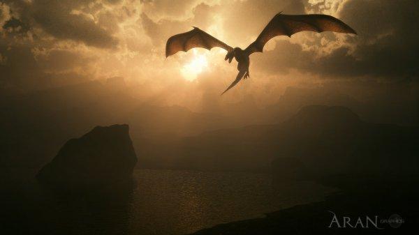 • Fiction: L'héritier dragon, d'Okami Rein •