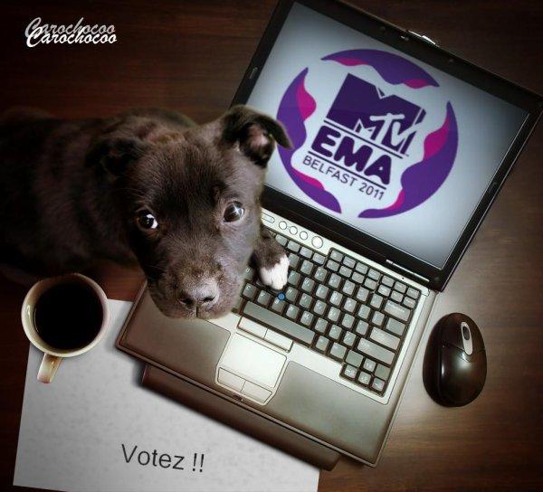 Votez Pour Les MTV EMA !!!