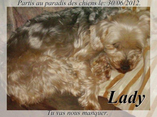 ♥ ADIEU MA PETITE LADY ♥