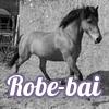 Robe-Bai