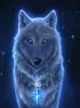 Blackness-Wolf
