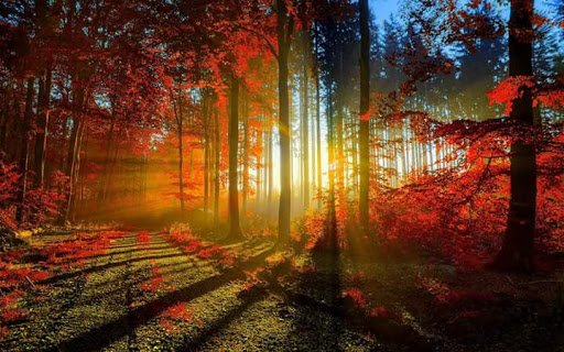 aime et etre aime telle que l on est sans etre etouffee.......