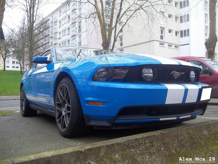 Ford Mustang GT 5.0(Brest)(11/03/12)
