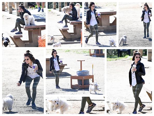 ------------+ 24/02/2017 : Lucyet son petit chien, Elvis ont été photographiés dans un parc pour chiens - Hollywood Lucy était vêtue d'une tenue toute simple et assez décontractépour une petite balade avec son chien, qui est au passage trop mignon. ------------+