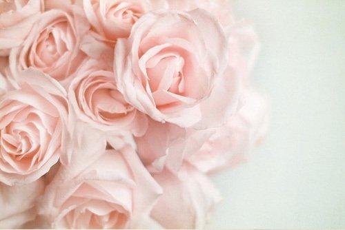« La haine est l'amour qui a sombré. »S. Kierkegaard