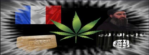Du cannabis frappé du sceau de Daesh distribué en France …