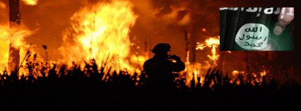 Face aux incendies, le Portugal fustige l'UE et avance la thèse terroriste  …