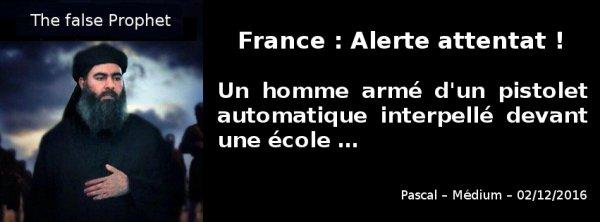 Val-de-Marne: un homme armé d'un pistolet automatique interpellé devant une école …