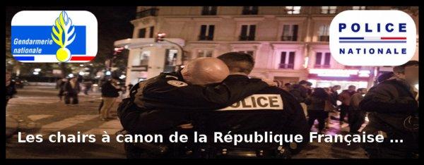 Les chairs à canon de la République Française …