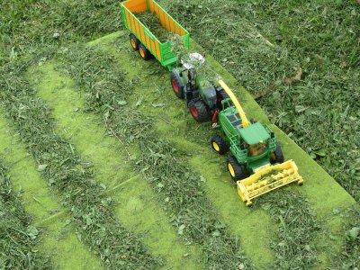Diorama d'ensilage d'herbe (2ème coupe de ray-grass)