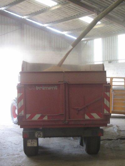 Livraisons de grain a la coopérative avec Fendt Vario 820
