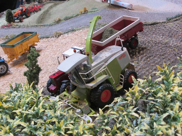 Exposition de miniatures a Mommenheim (67)