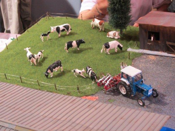 Exposition de Miniatures Agricoles à Morhange (57)