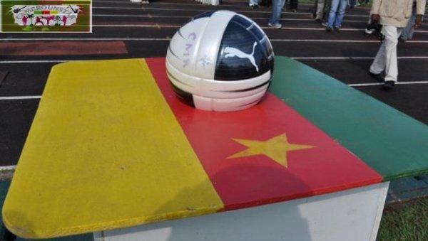 CAN 2019 : Le projet camerounais