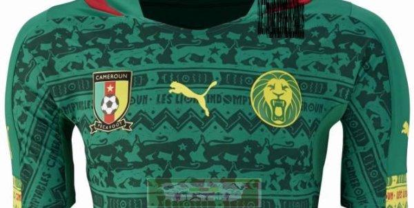 Classement Fifa: Le Cameroun gagne trois places