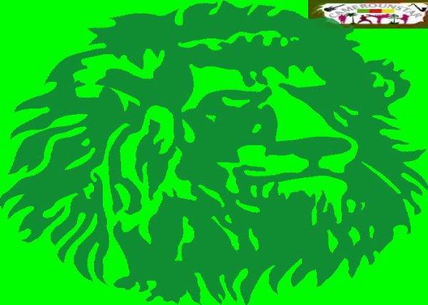 Eliminatoires CAN 2015: Les Lions indomptables dans le brouillard