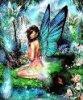 butterflies789
