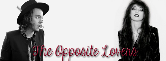 The Opposite Lovers - Les contraires s'attirent
