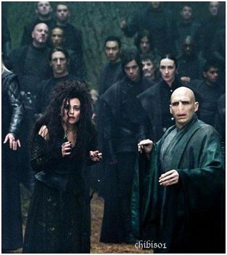 Voldemort et bellatrix et les mangemorts chibi 39 s harry - Harry potter 8 et les portes du temps bande annonce ...