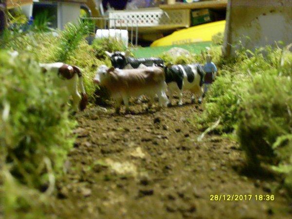 petit tour  au village de la Longuerais