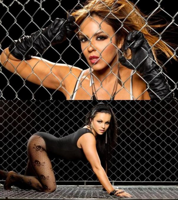 Divas HELL In a cell 2012