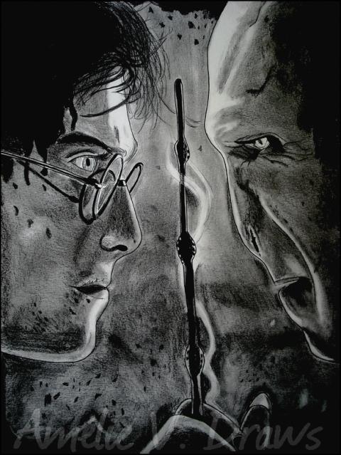 04. Harry Potter et Voldemort - Une passion, le dessin