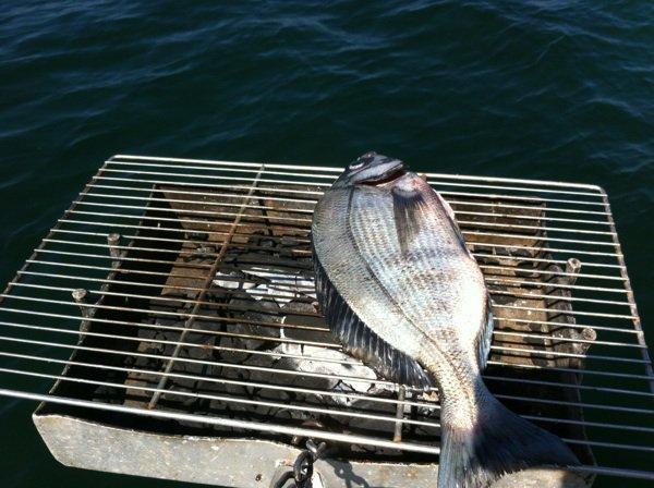 De la pêche à l assiette
