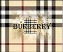 Photo de burberry13100